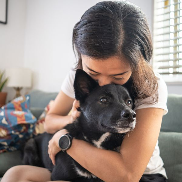 Woman hugging a dog on a couch
